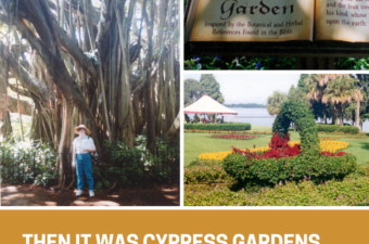Various photos from Cypress Gardens taken in the summer of 2002.